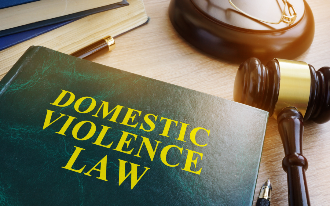 What is Domestic Violence in Minneapolis, Minnesota?
